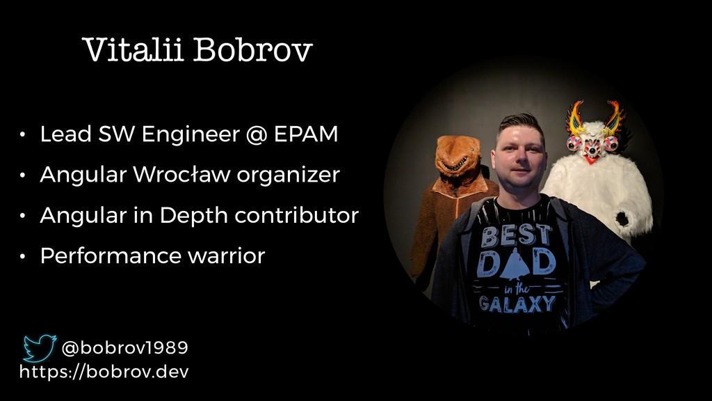 Vitalii Bobrov • Lead SW Engineer @ EPAM • Angu...