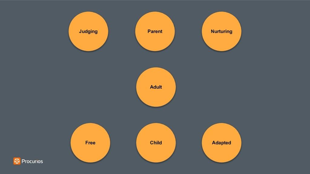 Adult Parent Child Adapted Nurturing Judging Fr...