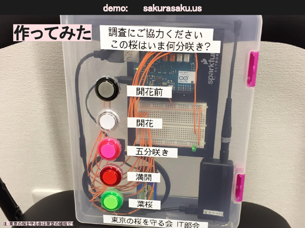 作ってみた 注:東京の桜を守る会は架空の組織です demo: sakurasaku.us