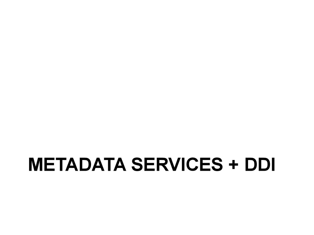 METADATA SERVICES + DDI