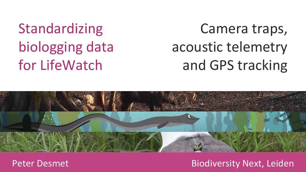 Standardizing biologging data for LifeWatch Cam...