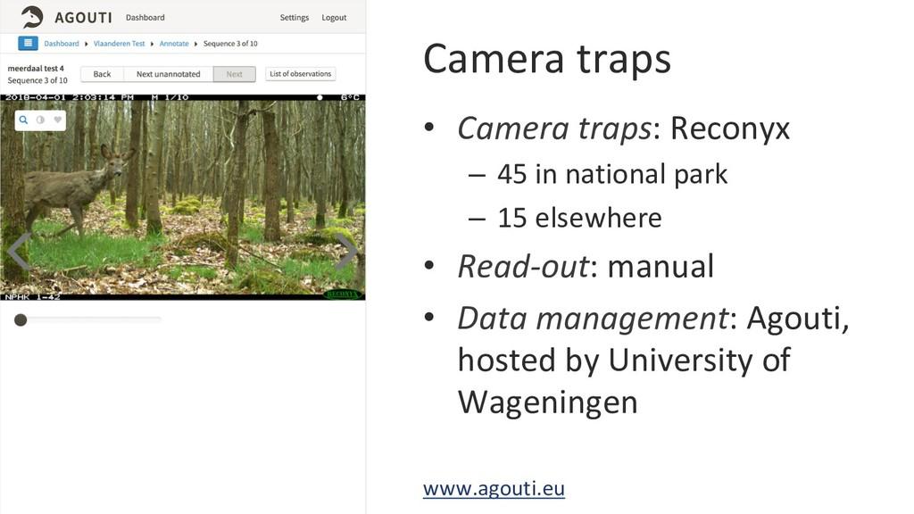 Camera traps • Camera traps: Reconyx – 45 in ...
