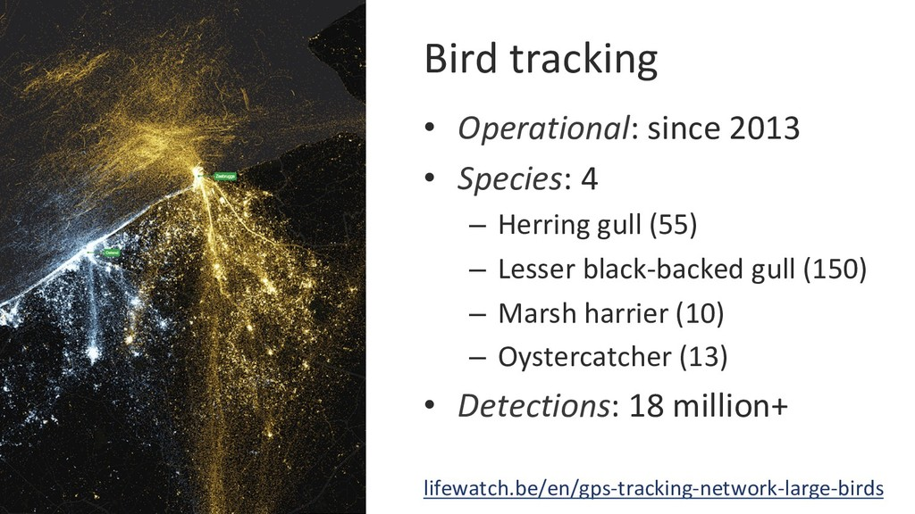 Bird tracking • Operational: since 2013 • Spe...