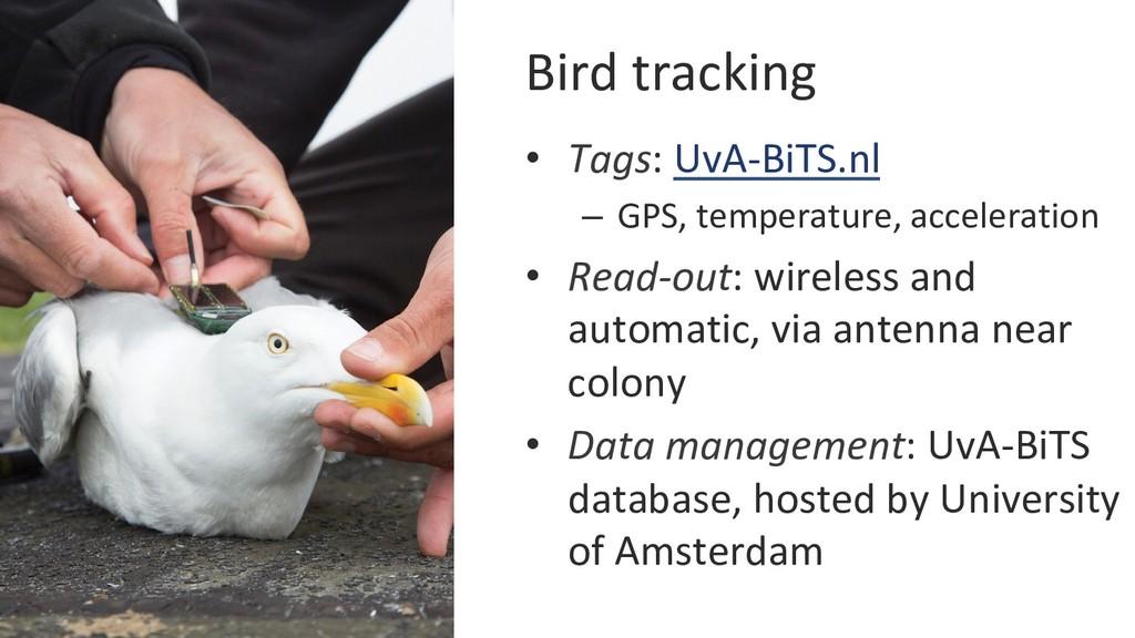 Bird tracking • Tags: UvA-BiTS.nl – GPS, temp...