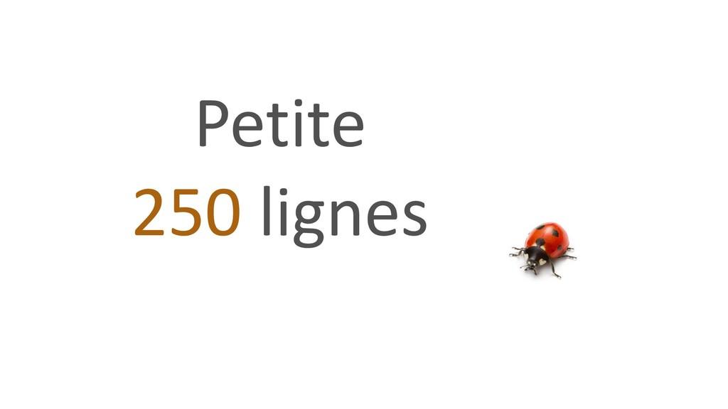 Petite 250 lignes