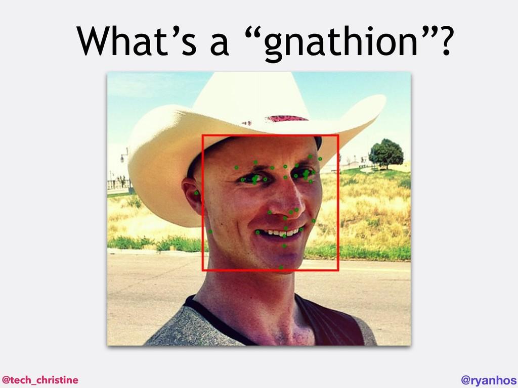 "@tech_christine @ryanhos What's a ""gnathion""?"