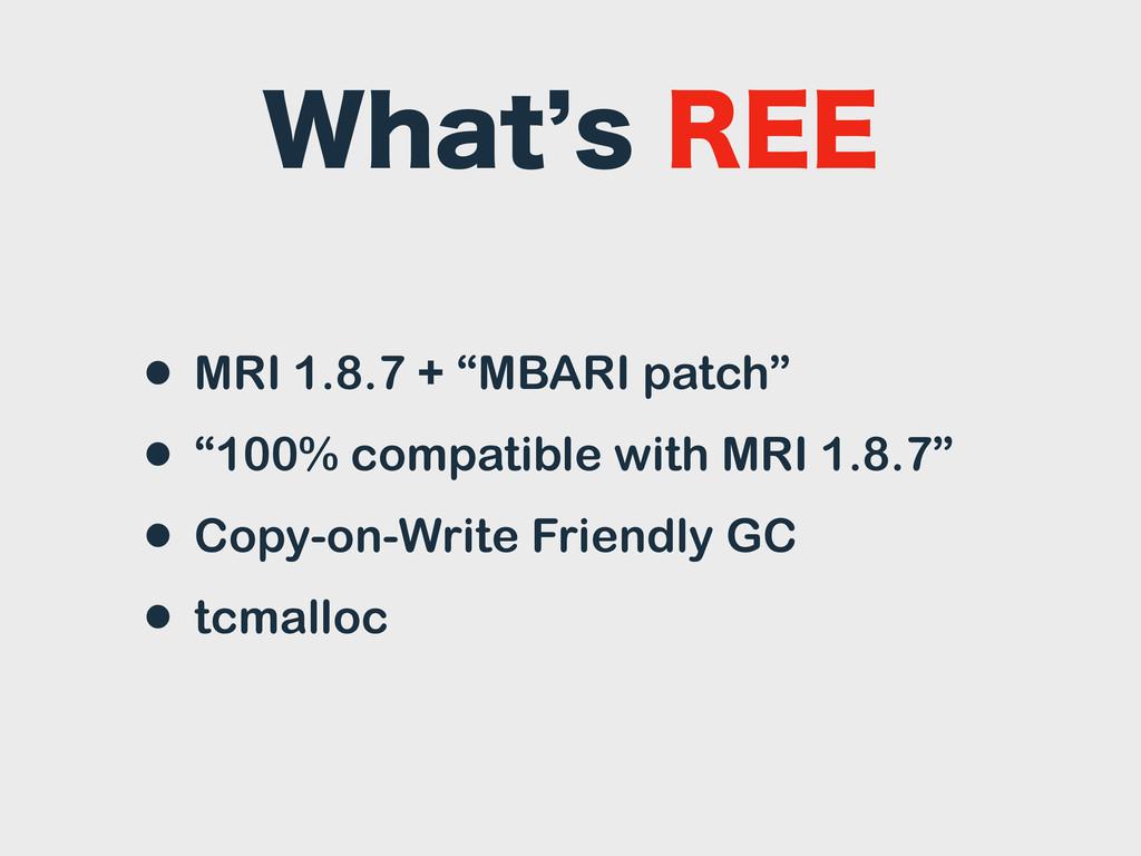 """8IBU`T3&& • MRI 1.8.7 + """"MBARI patch"""" • """"100% ..."""