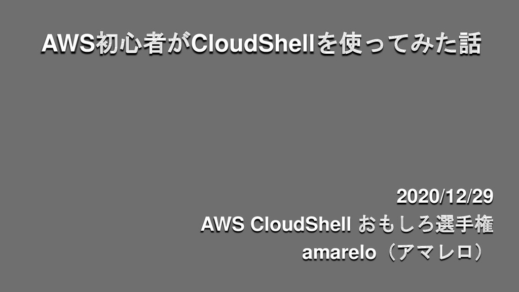 AWS初心者がCloudShellを使ってみた話 2020/12/29 AWS CloudSh...