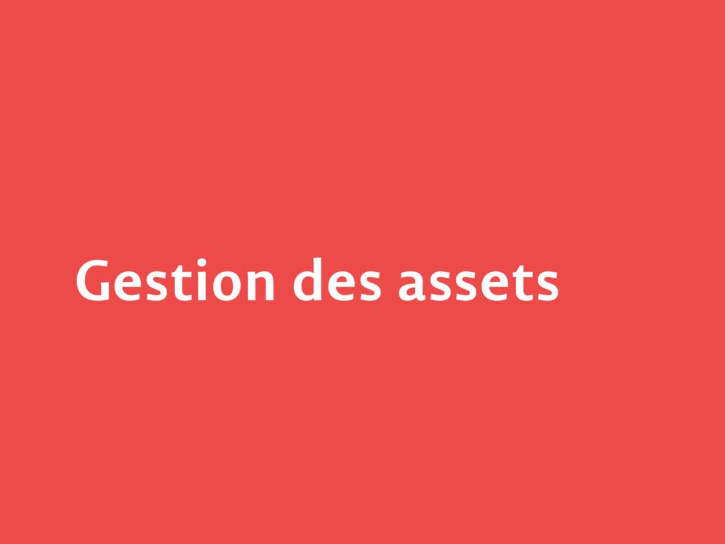 Gestion des assets