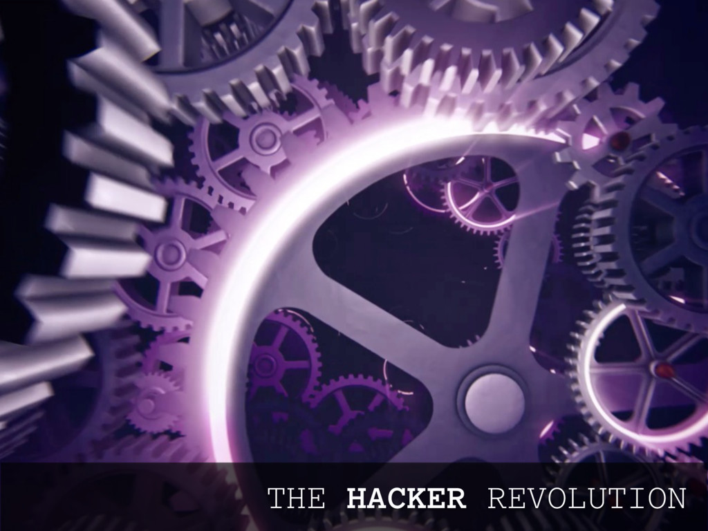 THE HACKER REVOLUTION