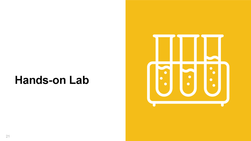 21 Hands-on Lab
