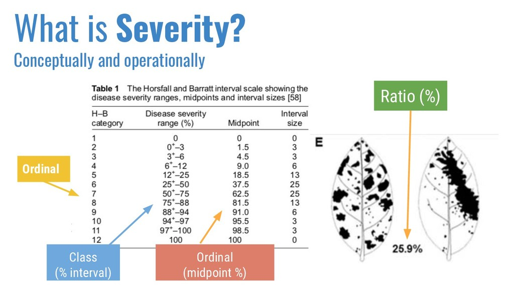 What is Severity? Conceptually and operationall...