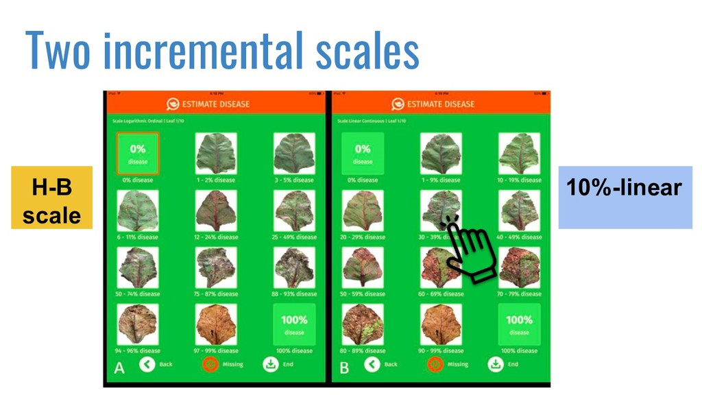 Two incremental scales H-B scale 10%-linear