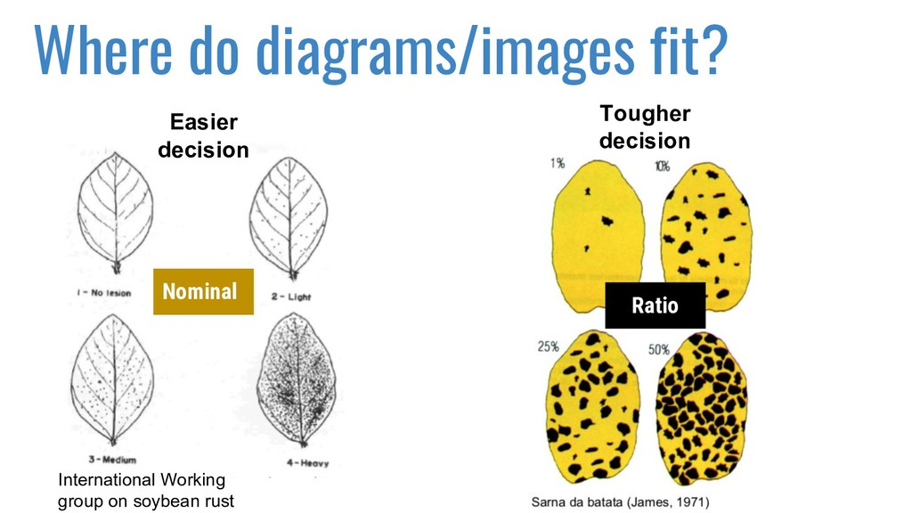 Where do diagrams/images fit? International Wor...