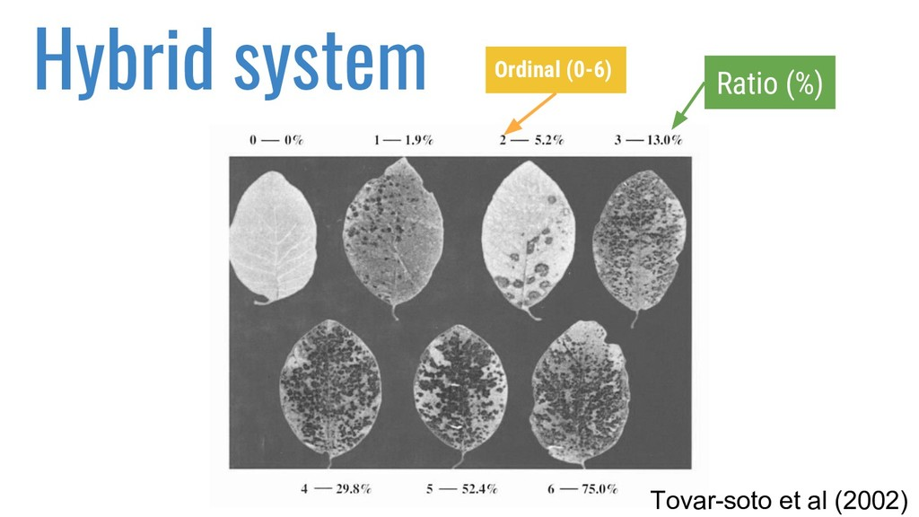Hybrid system Tovar-soto et al (2002) Ratio (%)...