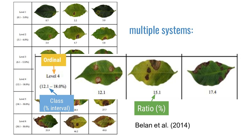 Belan et al. (2014) multiple systems: Ordinal C...