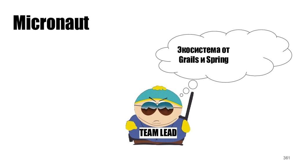 TEAM LEAD Экосистема от Grails и Spring Microna...