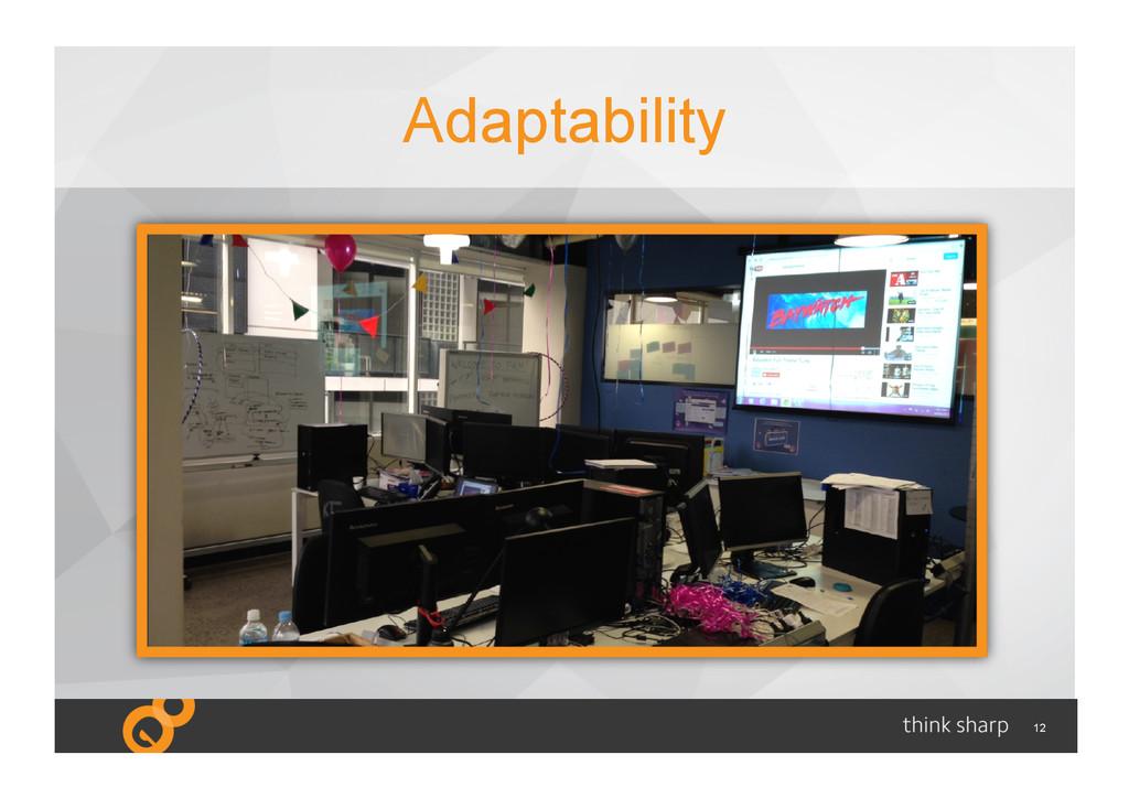 12 Adaptability