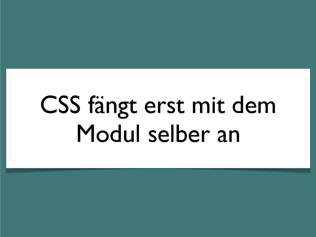 CSS fängt erst mit dem Modul selber an