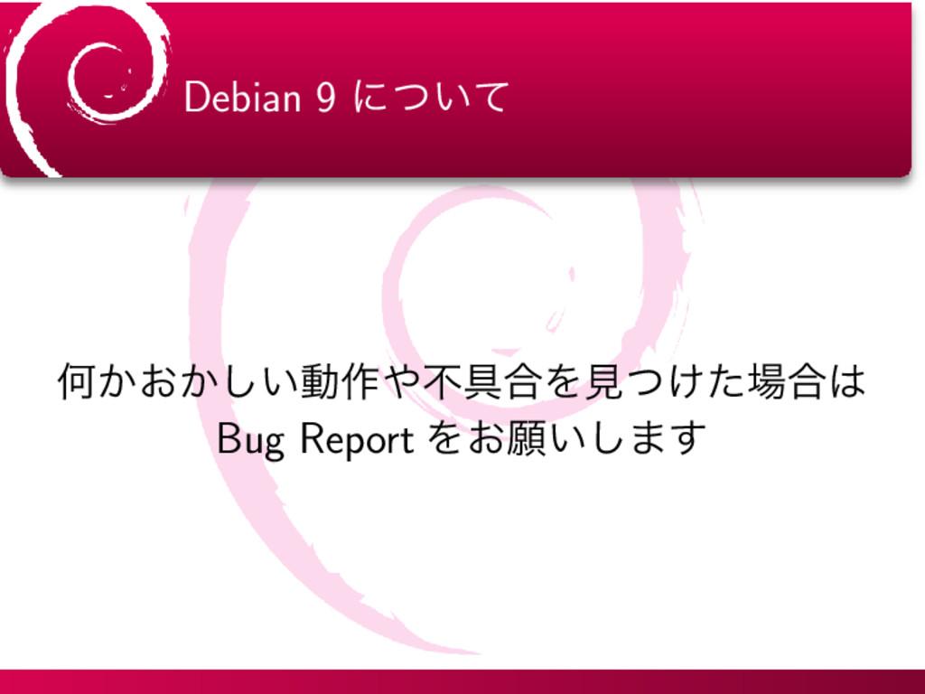 Debian 9 ʹ͍ͭͯ Կ͔͓͔͍͠ಈ࡞ෆ۩߹Λݟ͚ͭͨ߹ Bug Report Λ...