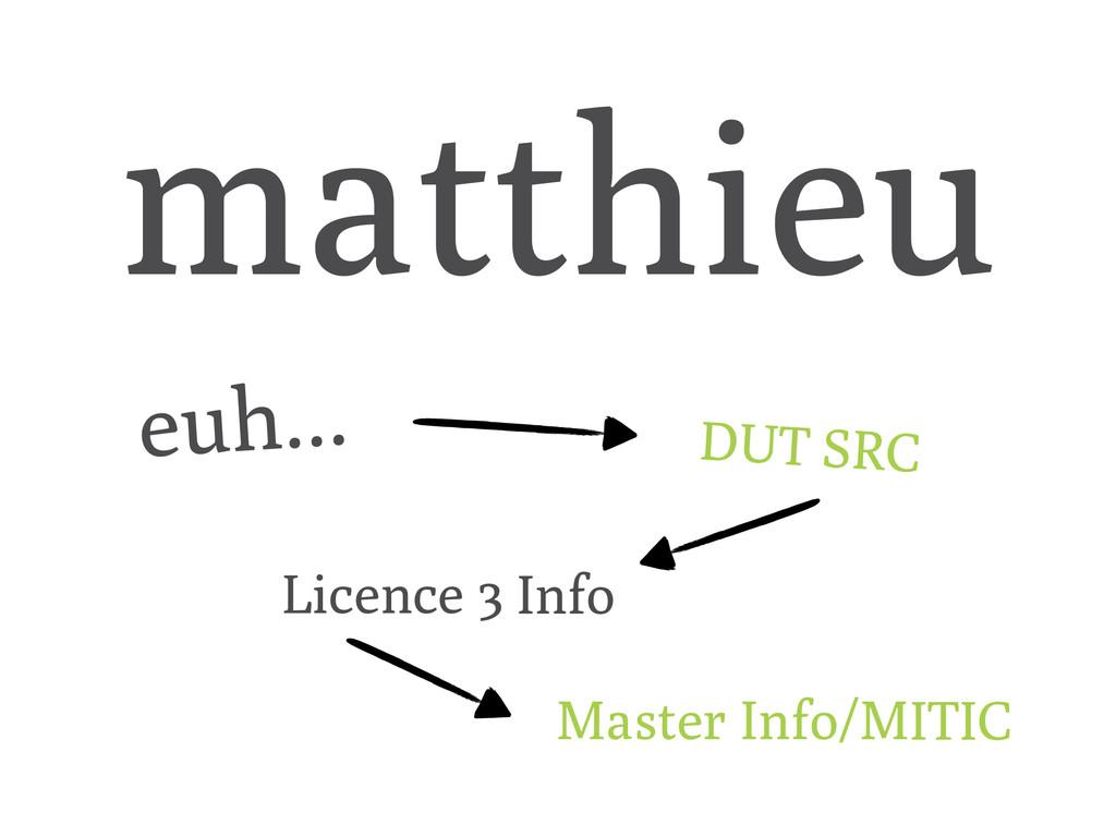 matthieu euh... DUT SRC Licence 3 Info Master I...