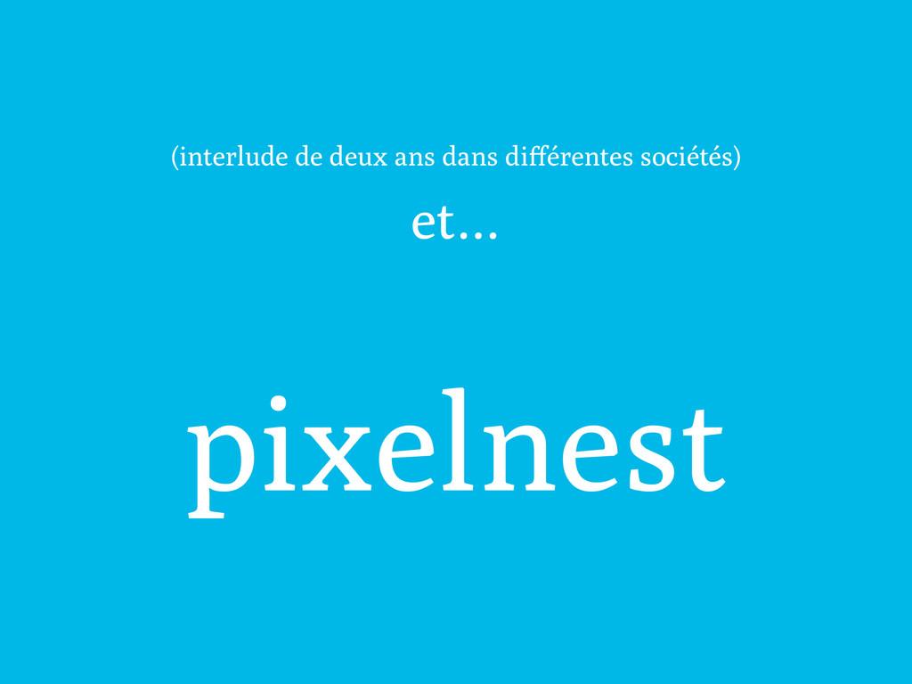 et… pixelnest (interlude de deux ans dans différ...