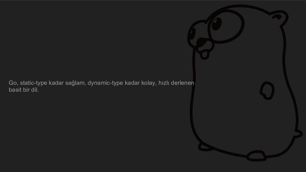 Go, static-type kadar sağlam, dynamic-type kada...