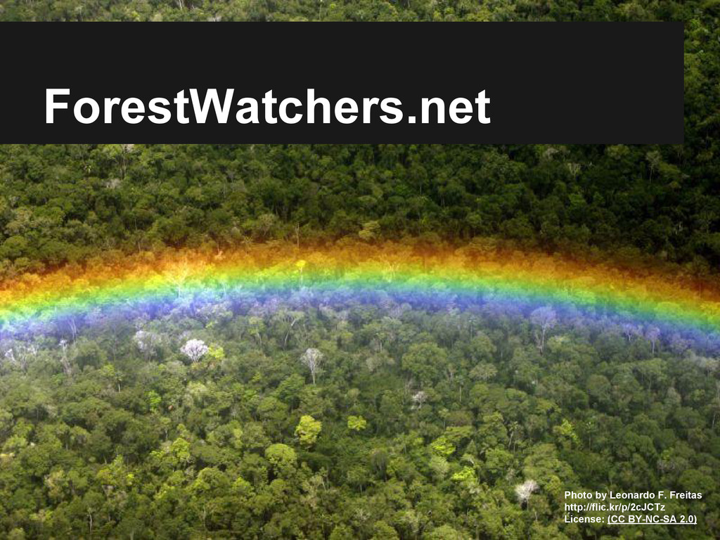 ForestWatchers.net Photo by Leonardo F. Freitas...