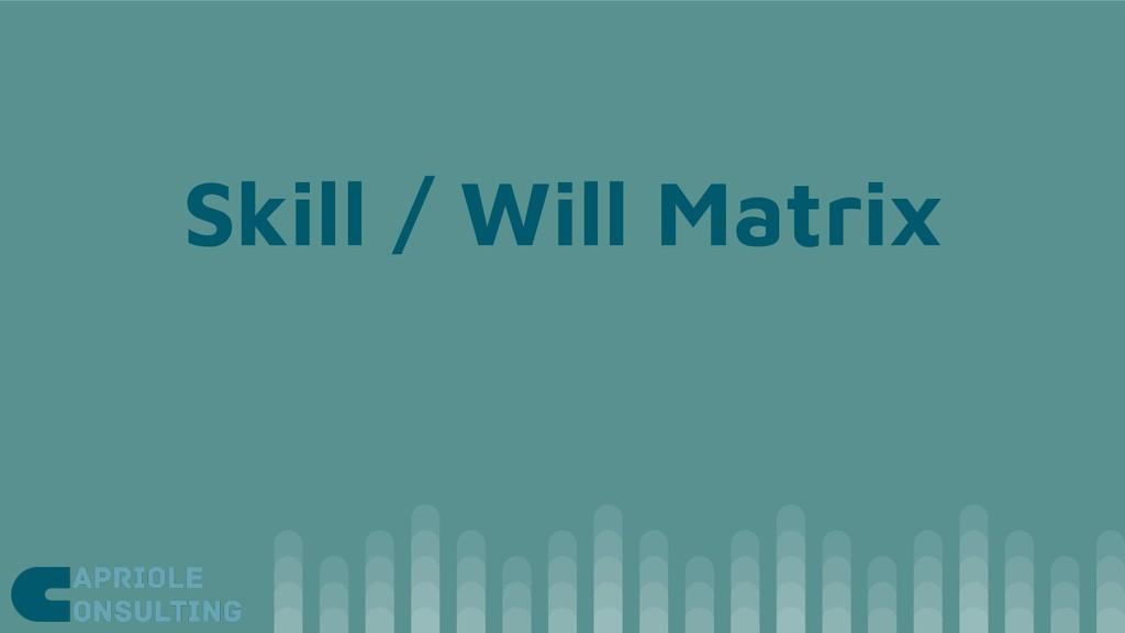 Skill / Will Matrix