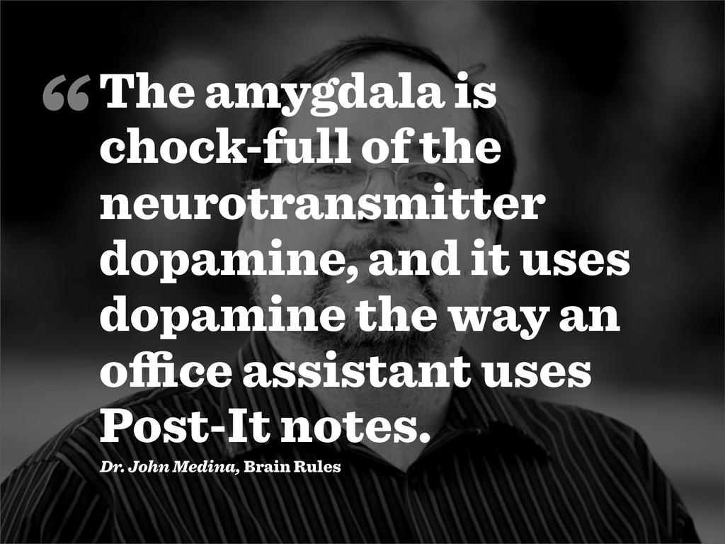 The amygdala is chock-full of the neurotransmit...