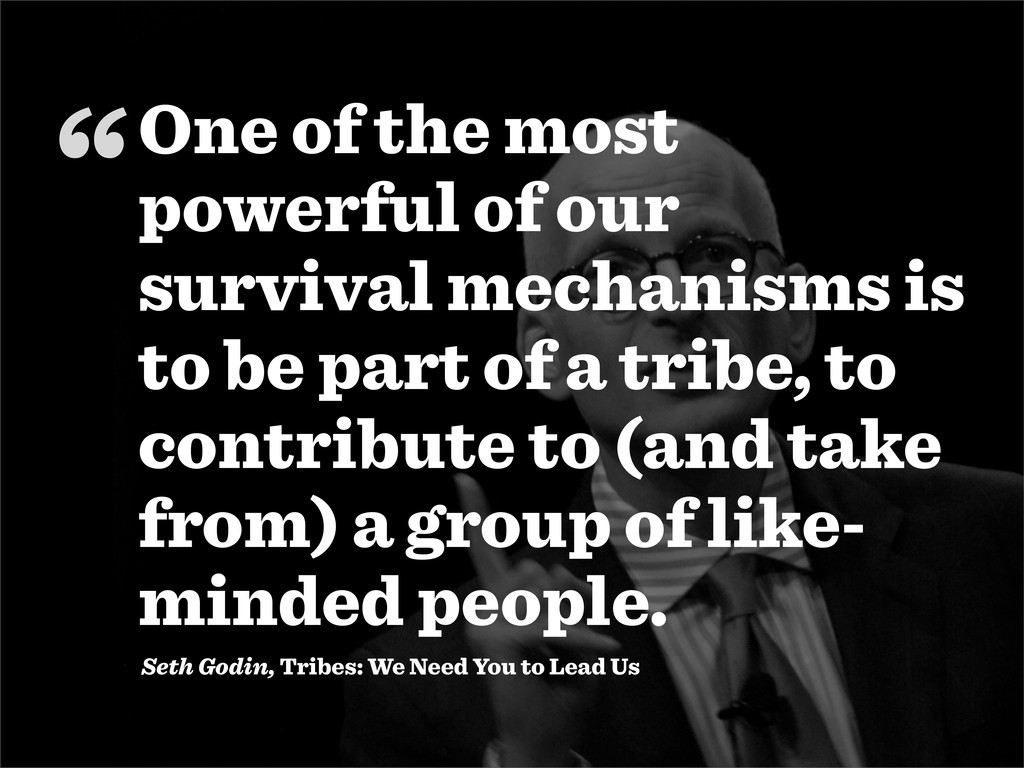 """"""" Seth Godin, Tribes: We Need You to Lead Us On..."""