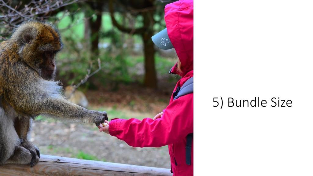 @ManfredSteyer 5) Bundle Size