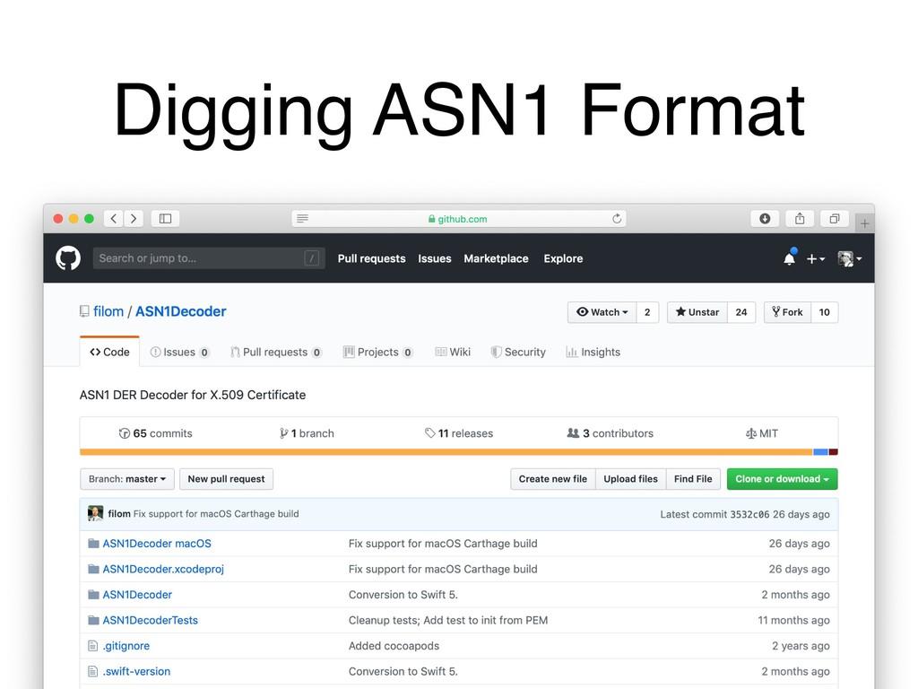 Digging ASN1 Format