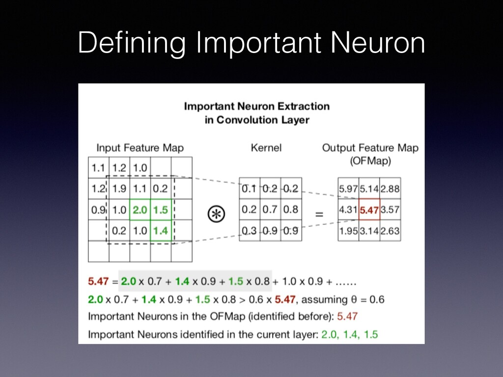 Defining Important Neuron