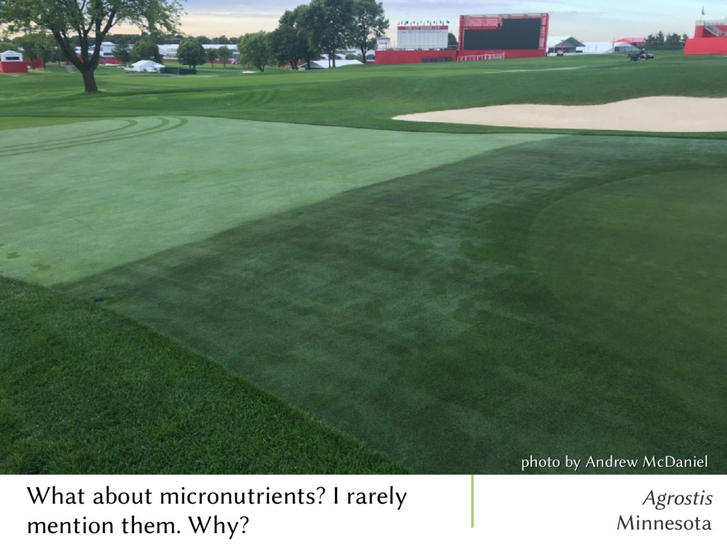 Agrostis Minnesota What about micronutrients? I...