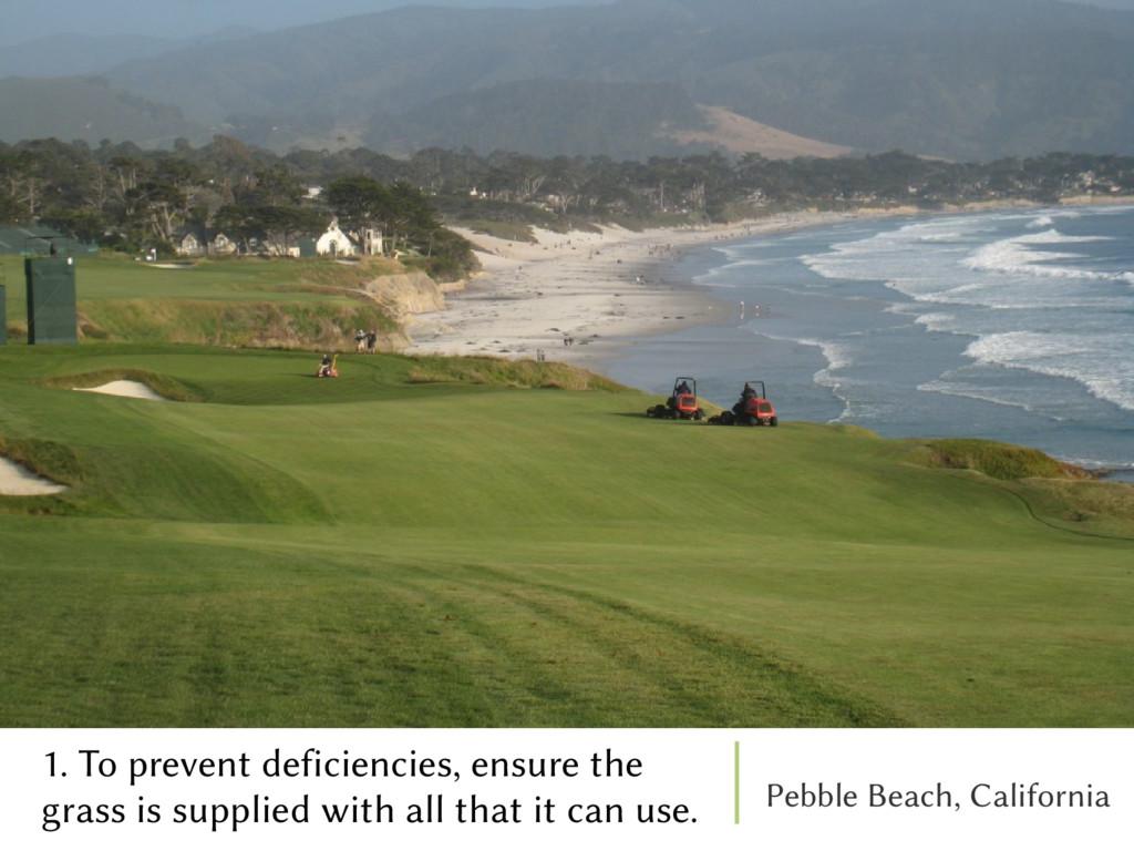 Pebble Beach, California 1. To prevent deficien...