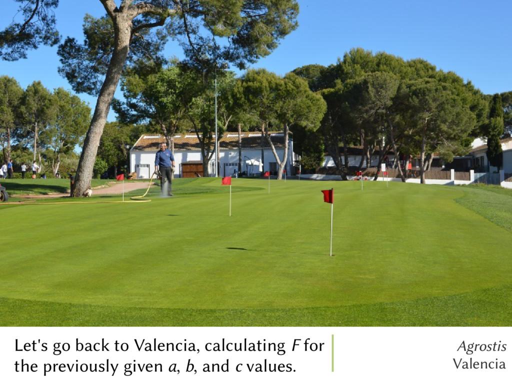 Agrostis Valencia Let's go back to Valencia, ca...