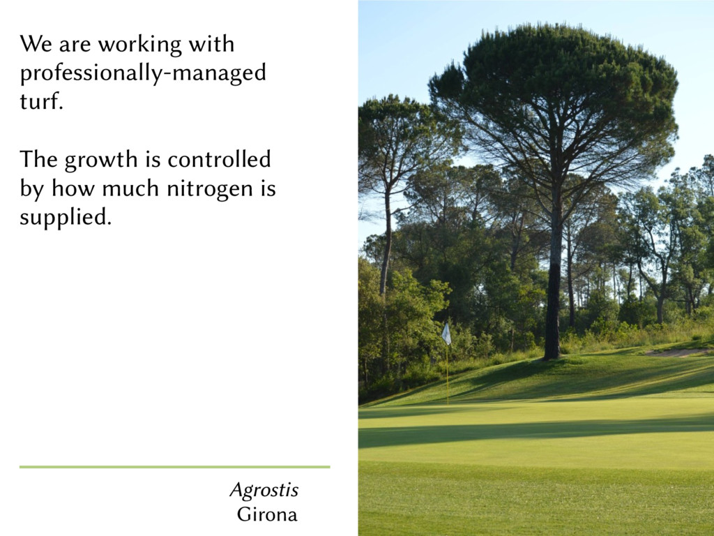 We are working with professionally-managed turf...