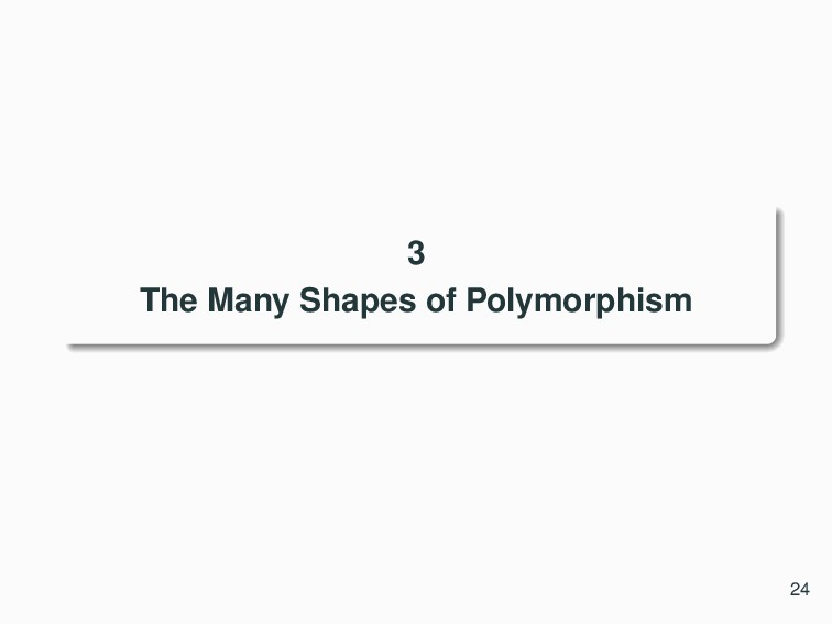 3 The Many Shapes of Polymorphism 24