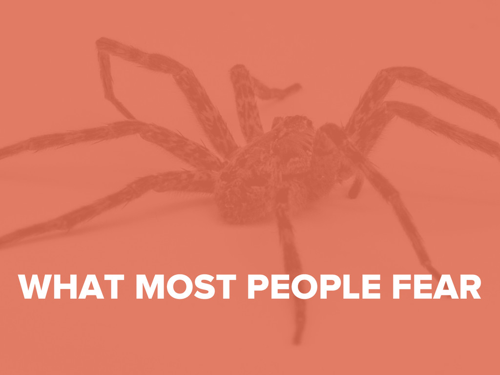 #DMDay15 WHAT MOST PEOPLE FEAR