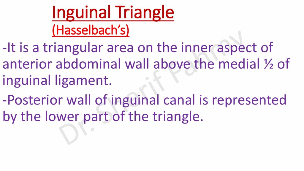 Inguinal Triangle (Hasselbach's) -It is a trian...