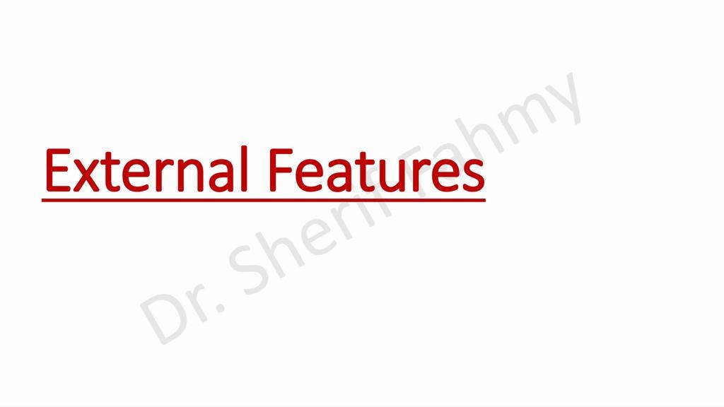 External Features