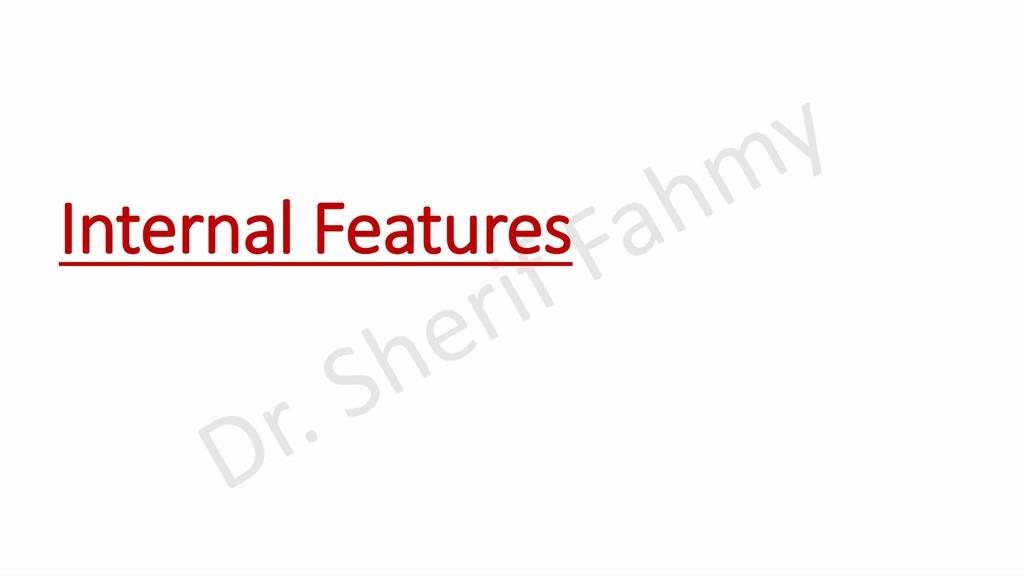 Internal Features