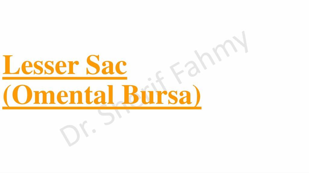 Lesser Sac (Omental Bursa)