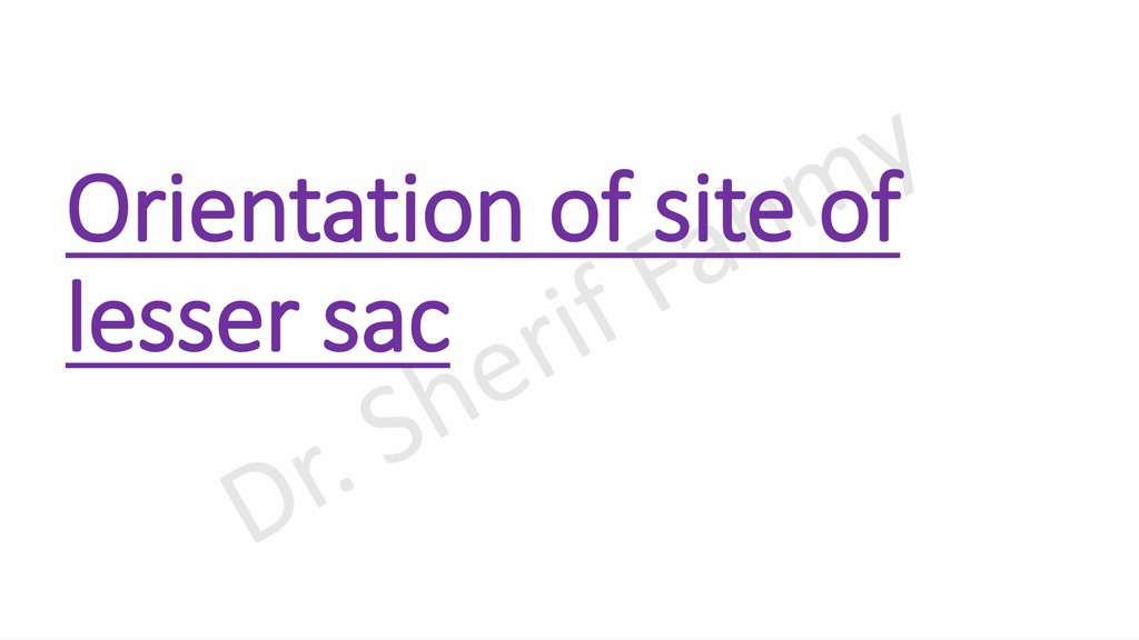 Orientation of site of lesser sac