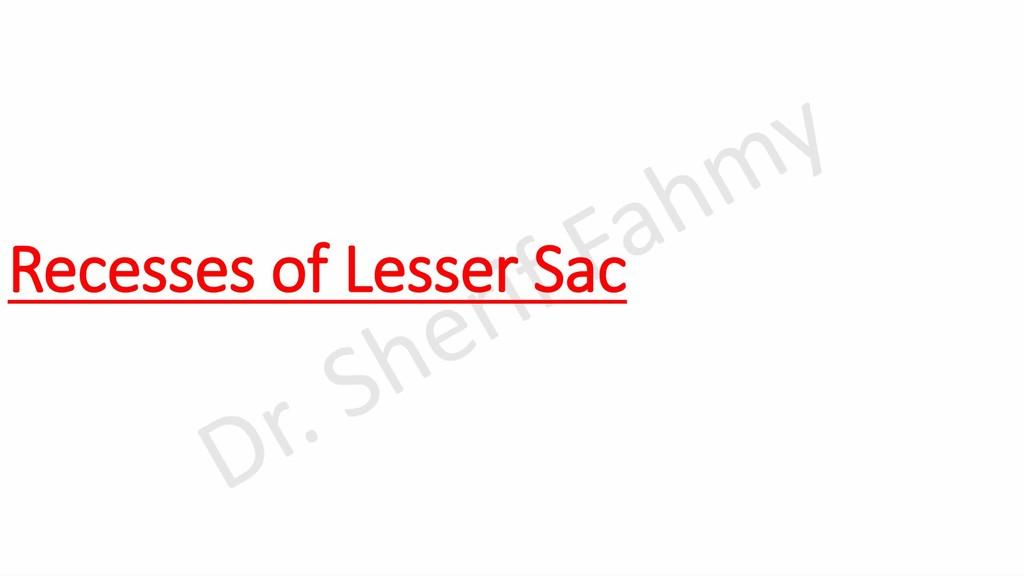 Recesses of Lesser Sac