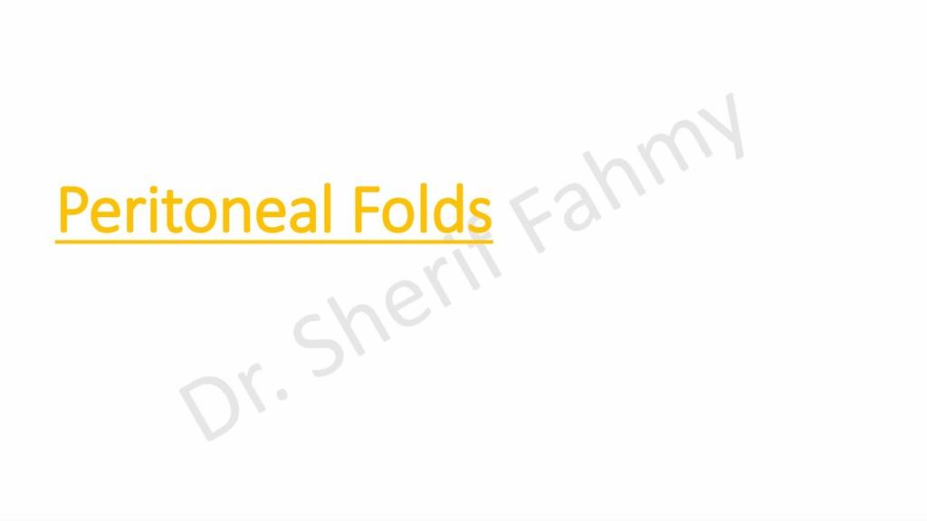 Peritoneal Folds