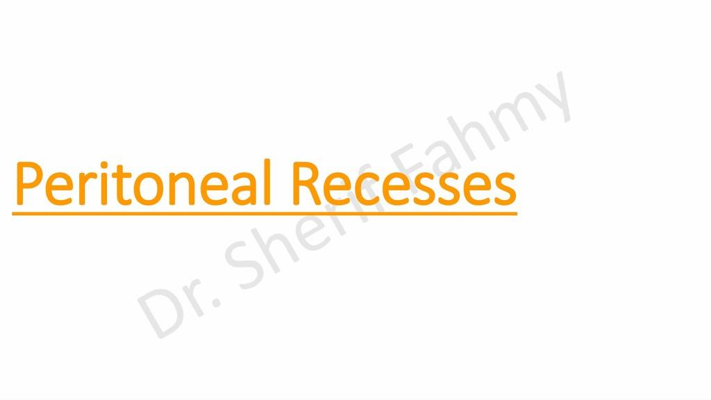Peritoneal Recesses