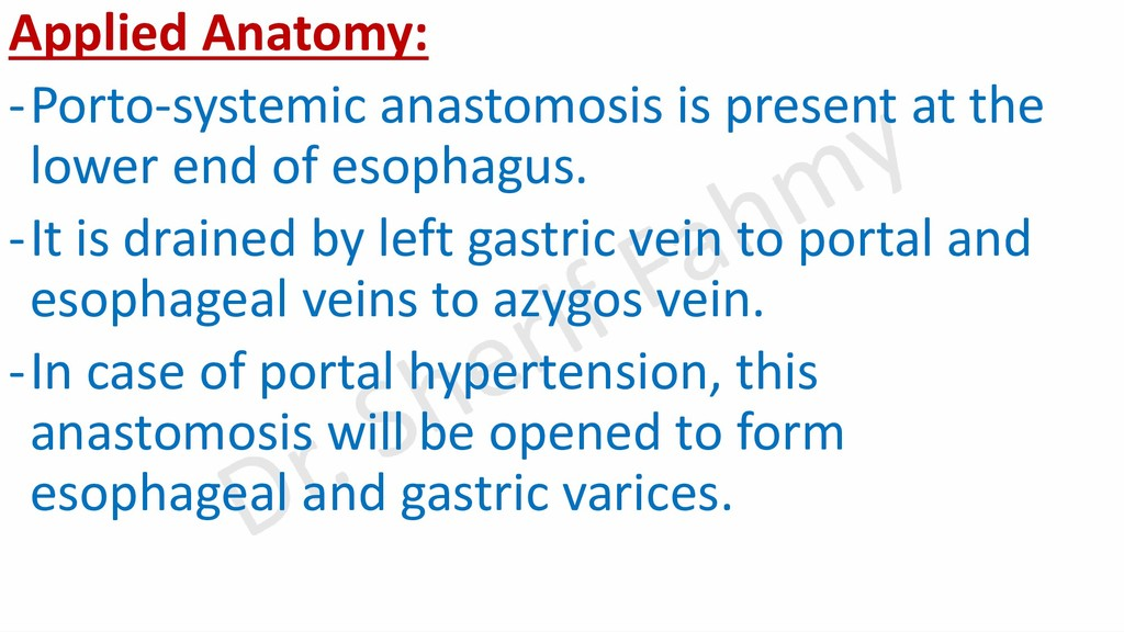 Applied Anatomy: -Porto-systemic anastomosis is...