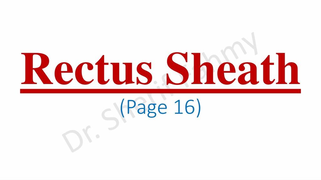 Rectus Sheath (Page 16)